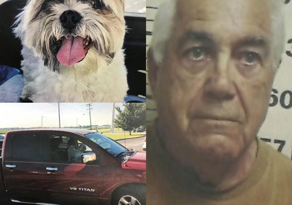 78 YEAR OLD MAN ALLEGEDLY USED A PUPPY TO LURE A CHILD INTO HIS CAR